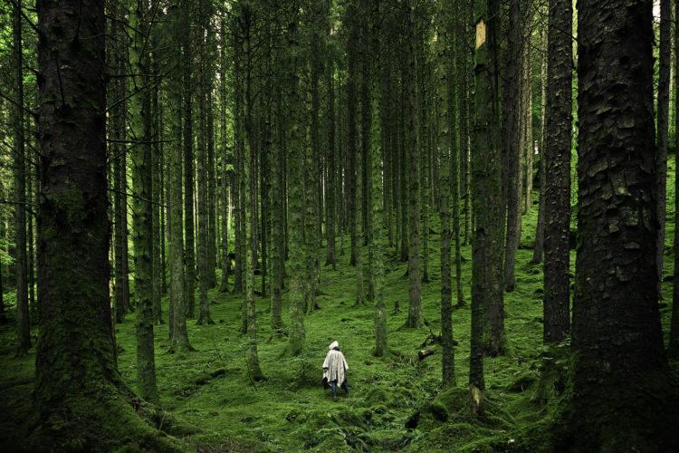 Ein weißes Gespenst in einem grünen Wald